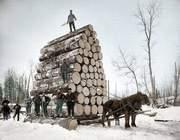 Покупаем дрова по Украине.