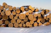 Продаём дрова оптом акации и дуба в Херсонской области.